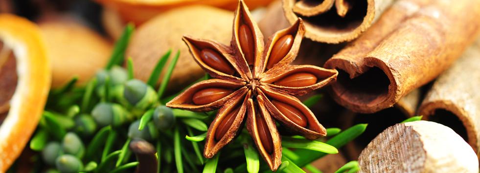 Spice Takeaway Spice Garden OX10