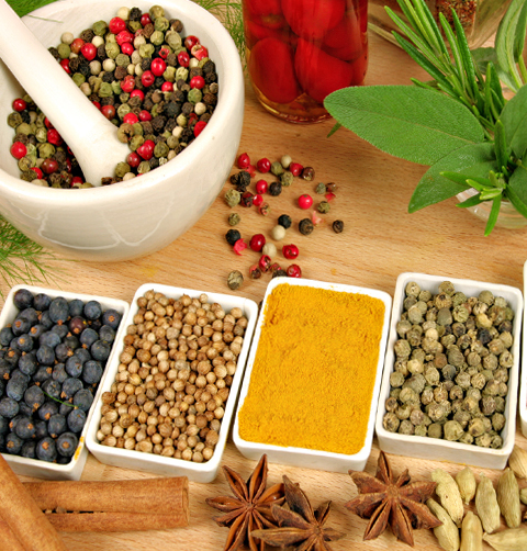 Spices Restaurant and Takeaway Indian Diner SW1P