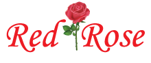 Welcome to Red Rose Tandoori N19