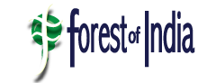 Logo Forest of India WD5