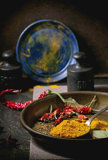 indian food at radhuni restaurant n14