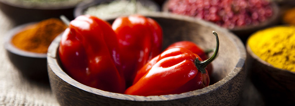 Takeaway chili Cinnamon Bay GU46